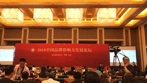2018中国品牌影响力发展论坛
